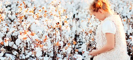 A girl picking up cotton in a cotton farm