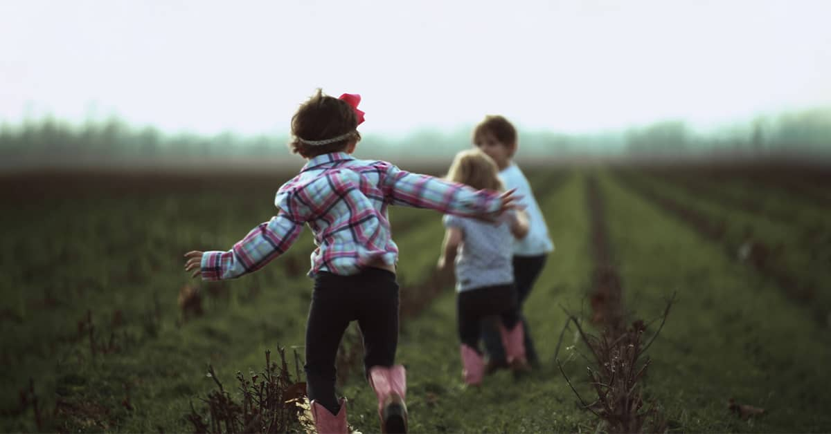 3 children playing in a cotton field