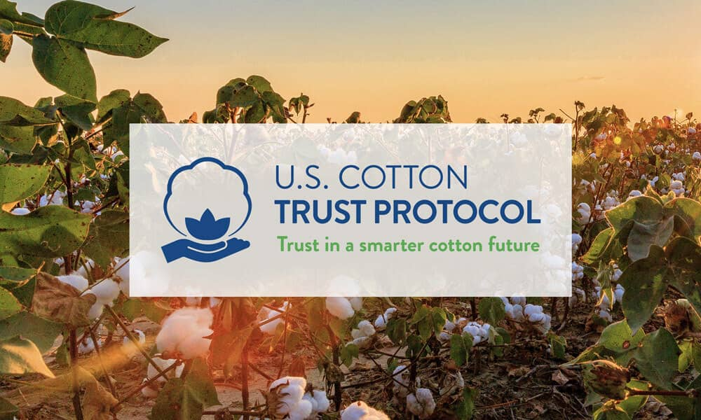cotton field background with the USCTP logo